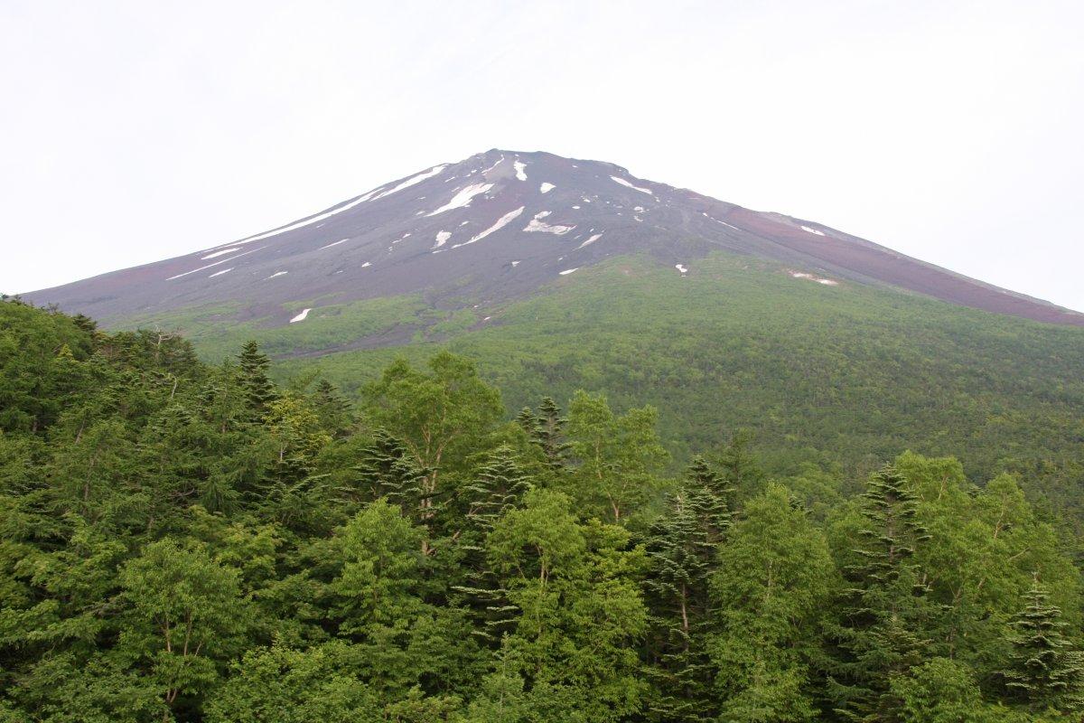 小富士から望む富士山