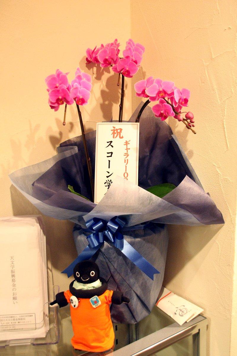 ギャラリーオープンおめでとう!!