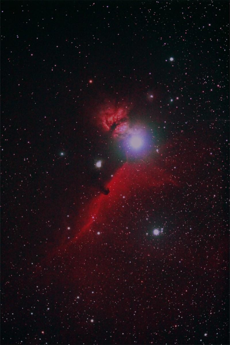 燃える木と馬頭状星雲